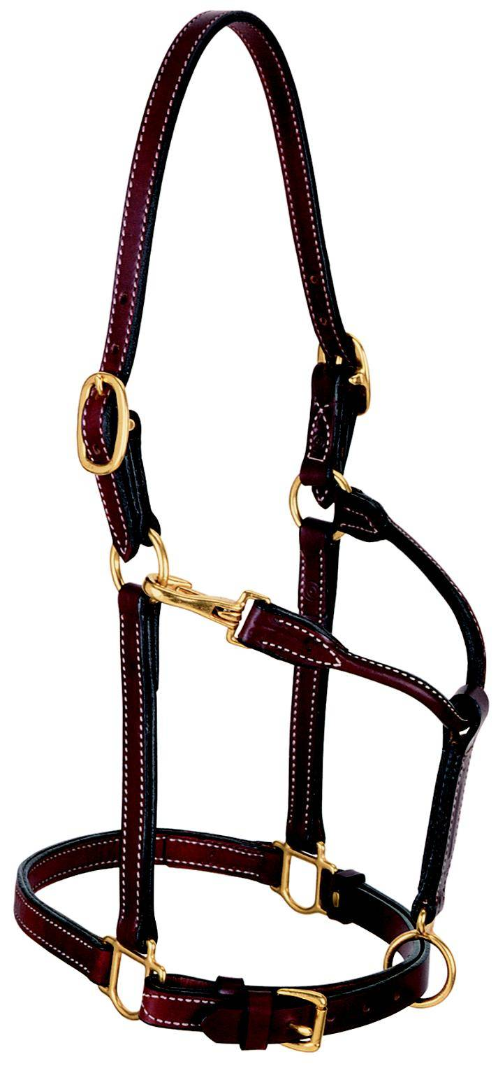 Weaver Leather 3/4'' Double Buckle Leather Halter