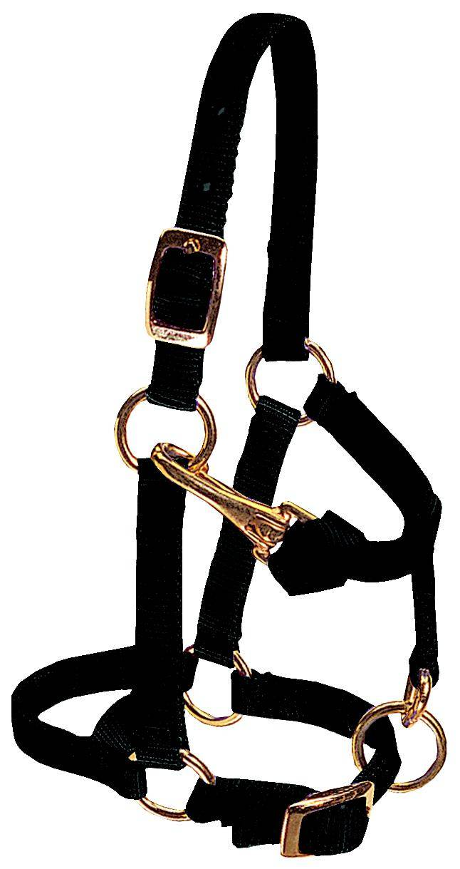 Weaver Leather Miniature Adjustable Chin And Throat Snap Halter