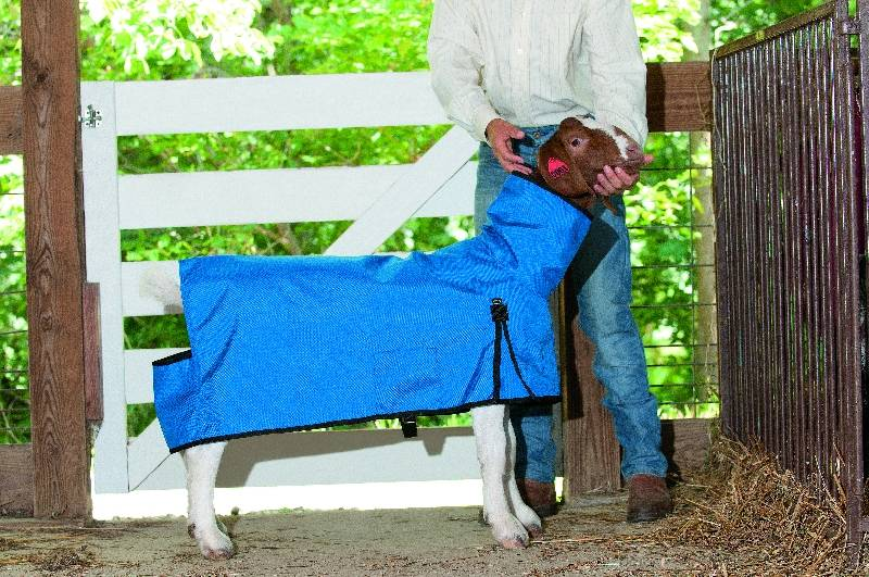 Weaver Leather Cordura Goat Blanket