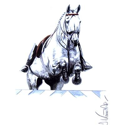 Monaco (Show Jumper) By: Jan Kunster, Matted