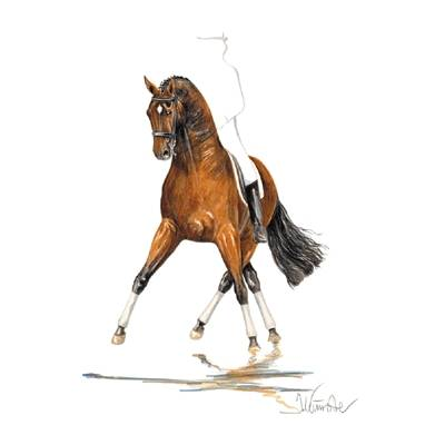 San Diego (Dressage) By: Jan Kunster, Matted