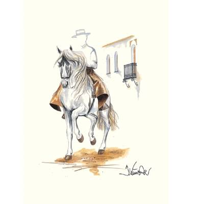 Cordoba (Andalusian) By: Jan Kunster, Matted