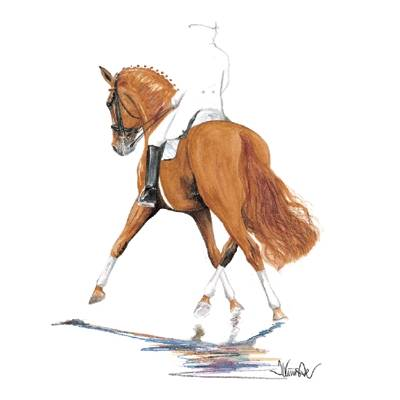 Bernstein (Dressage), Matted