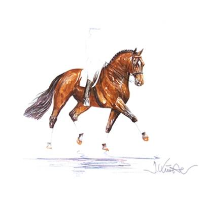 Classic (Dressage) By: Jan Kunster