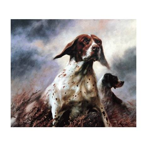 English Pointer By: Mick Cawston