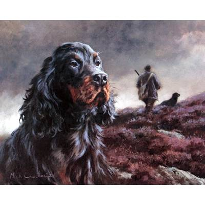 Head of Gordon Setter By: Mick Cawston