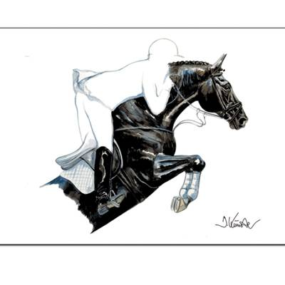 Spitfire (Show Jumper) By: Jan Kunster