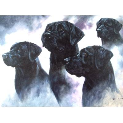 The Black Lab (Labrador Retriever) Blank Greeting Cards - 6 Pack