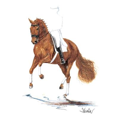 Rheingold (Dressage) By: Jan Kunster, Matted