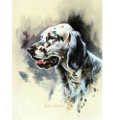 English Setter By: Mick Cawston
