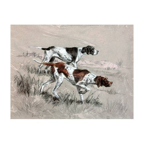 English Pointers By: David Thompson, Matted