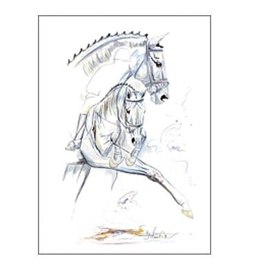 Riviera (Dressage) By: Jan Kunster