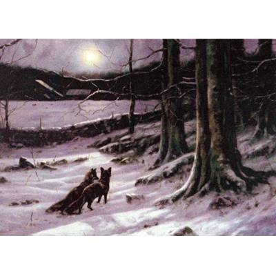 Fox and Fox Hunting - Midnight Tryst (Fox) Blank Greeting Cards - 6 Pack