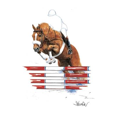 Parsifal (Show Jumper) By: Jan Kunster, Matted