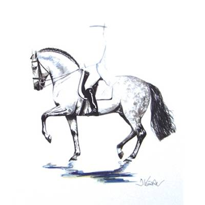 Invasor (Dressage) By: Jan Kunster, Matted