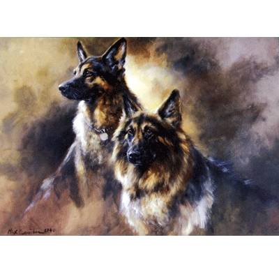 Longhaired German Shepherds Blank Greeting Cards - 6 Pack