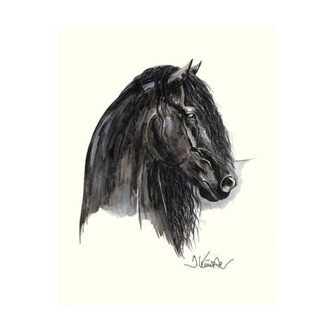 Johnny C (Friesian) By: Jan Kunster, Matted
