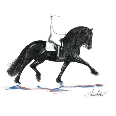 Juwel (Friesian Dressage) By: Jan Kunster, Matted