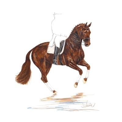 Scotch (Dressage) By: Jan Kunster