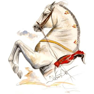 Ayamonte (Lipizzan) By Jan Kunster, Matted