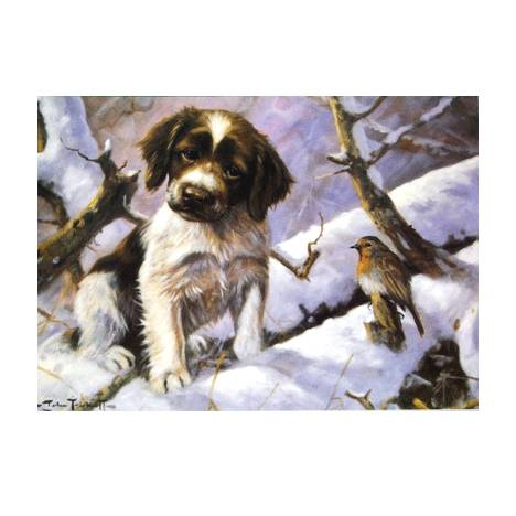 First Encounter (English Springer) Blank Greeting Cards - 6 Pack