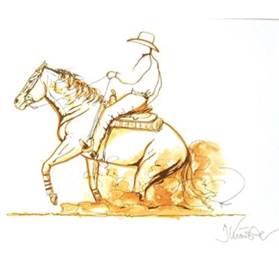 Stop (Western Reining) By: Jan Kunster, Matted
