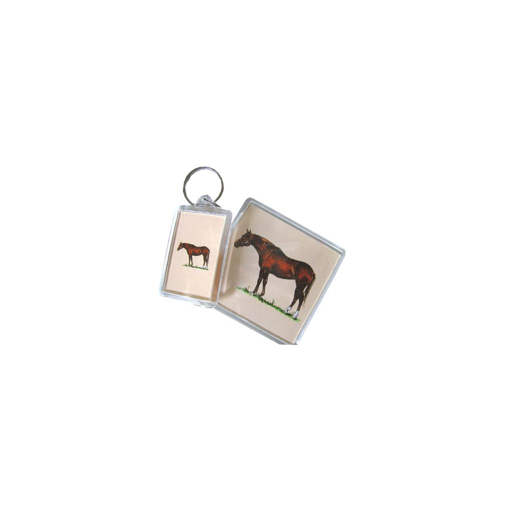 Acrylic Magnet - Thoroughbred