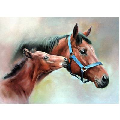 Horses - The Blue Head Collar Blank Greeting Cards - 6 Pack
