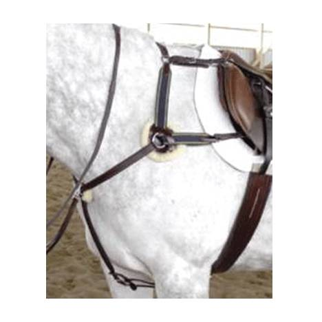 Five Point Breastplate