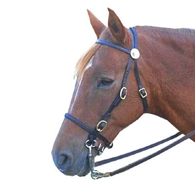 Leather Trail Bridle