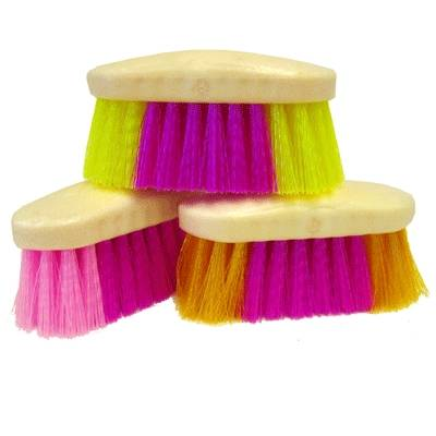 Rainbow Brushes - Case of 12