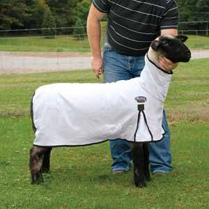 ProCool Mesh Sheep Blanket with Crystal Binding