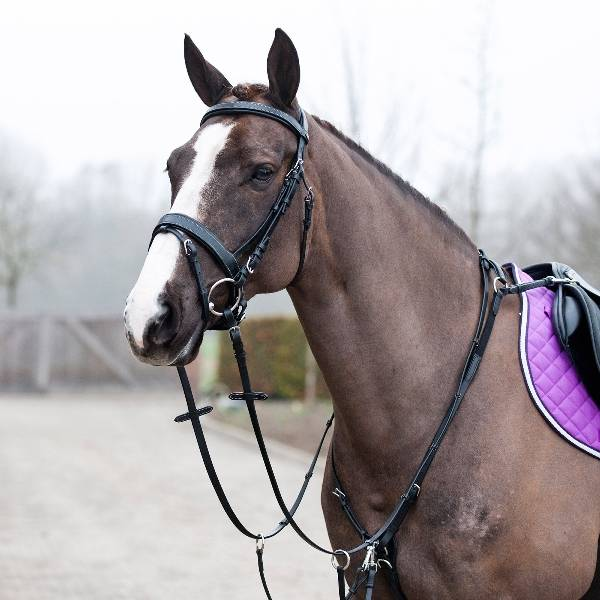 Horze Venice Combined Martingale with Breast Harness