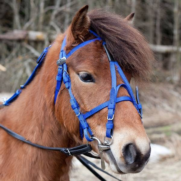 HorZe Synthetic Open Bridle - Pony