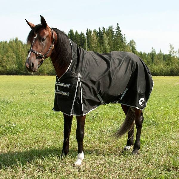 Finn Tack Avalanche Winter Blanket