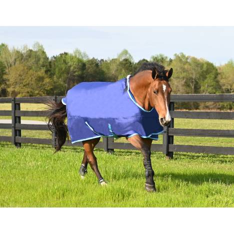 HUG 1200D Prize 300g Heavy Weight Turnout Blanket