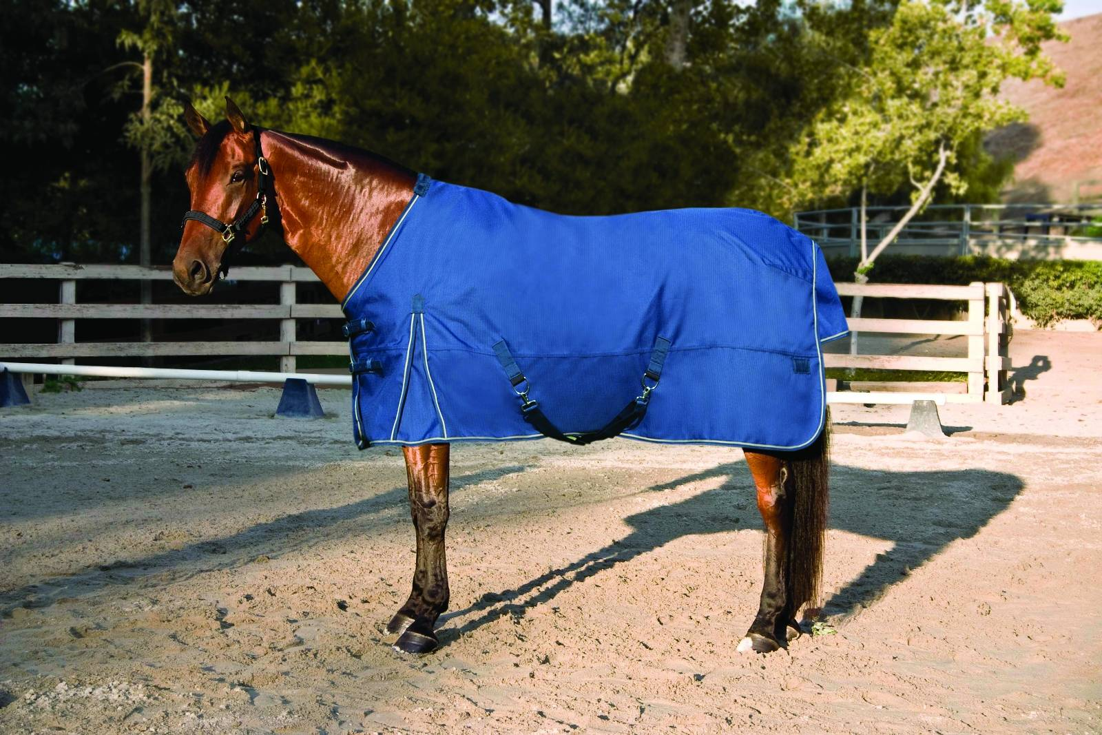 Kensington All Around HD Lightweight Turnout Blanket - FREE Kensington Blanket Storage Bag Valued at $45!