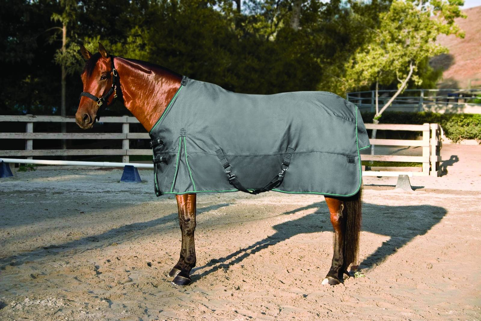 Kensington All Around HD MW Turnout Blanket