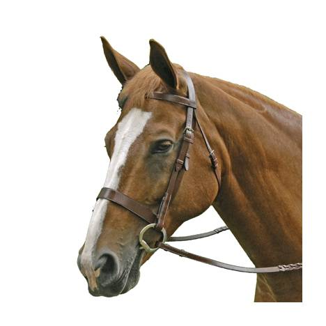 Exselle Elite Traditional Fox Hunt Bridle