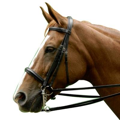 Exselle Elite Double Bridle
