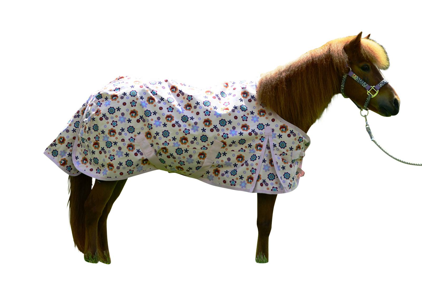 EOUS Pony Flower Power Sheet