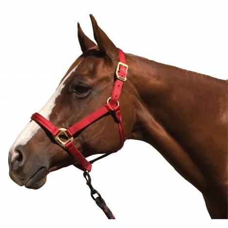 Blocker Halter with Cable Reinforced Crown & Noseband