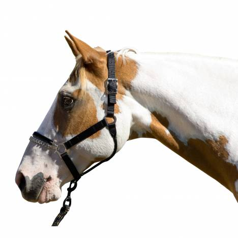 Blocker Control Halter with Cable Reinfored Crown & Rubber Noseband