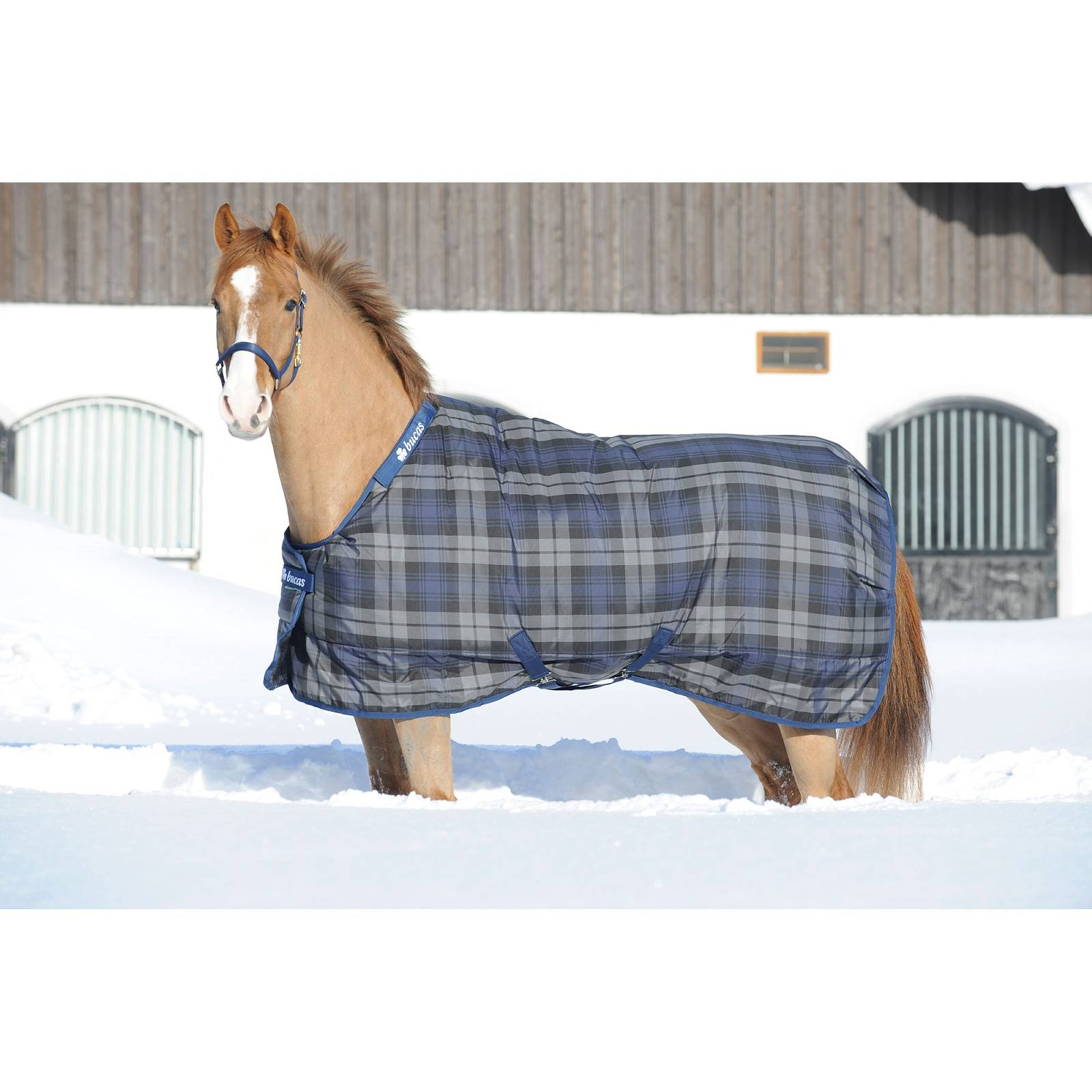 Bucas Celtic Medium Weight Stable Blanket