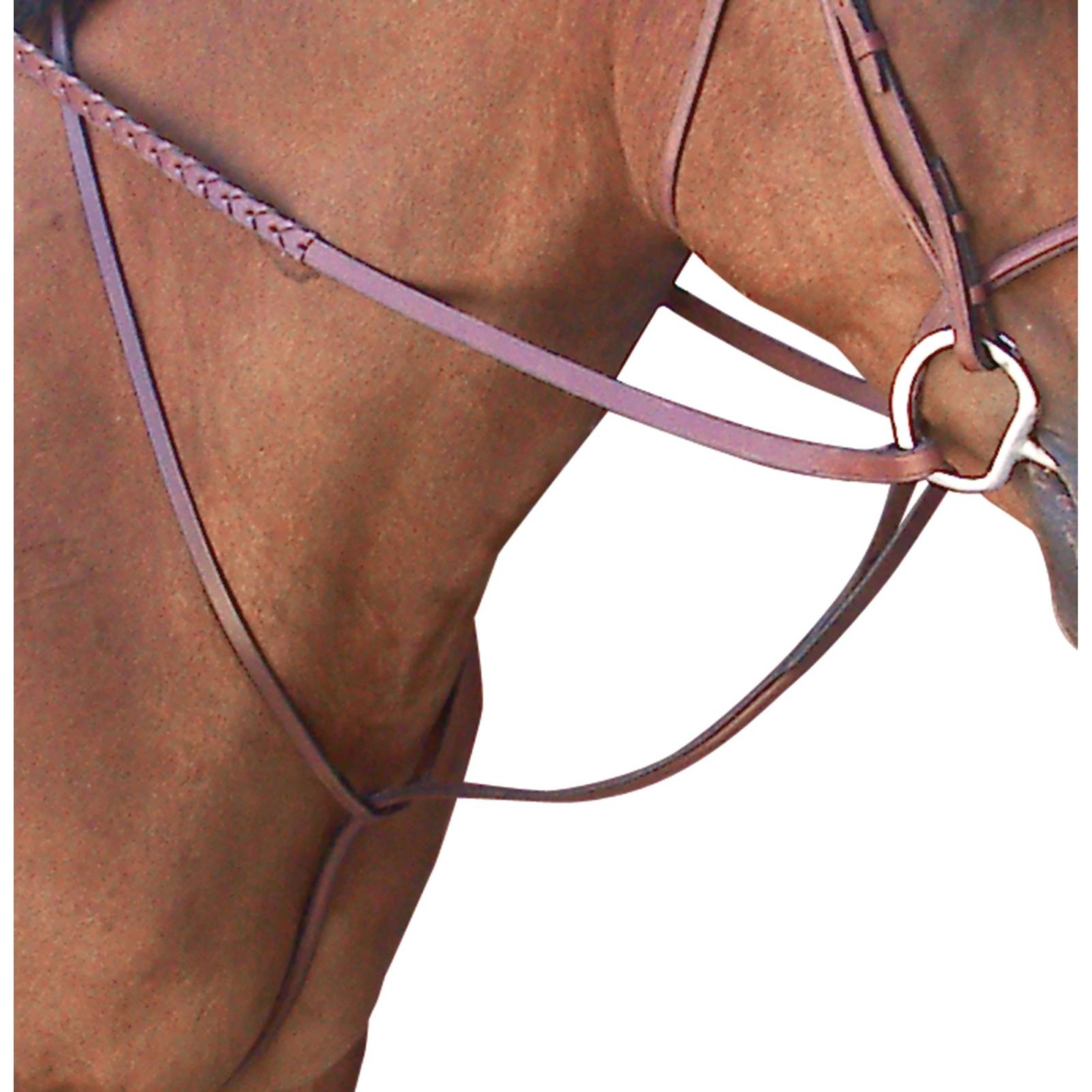Toklat Passport Plain Raised Standing Martingale