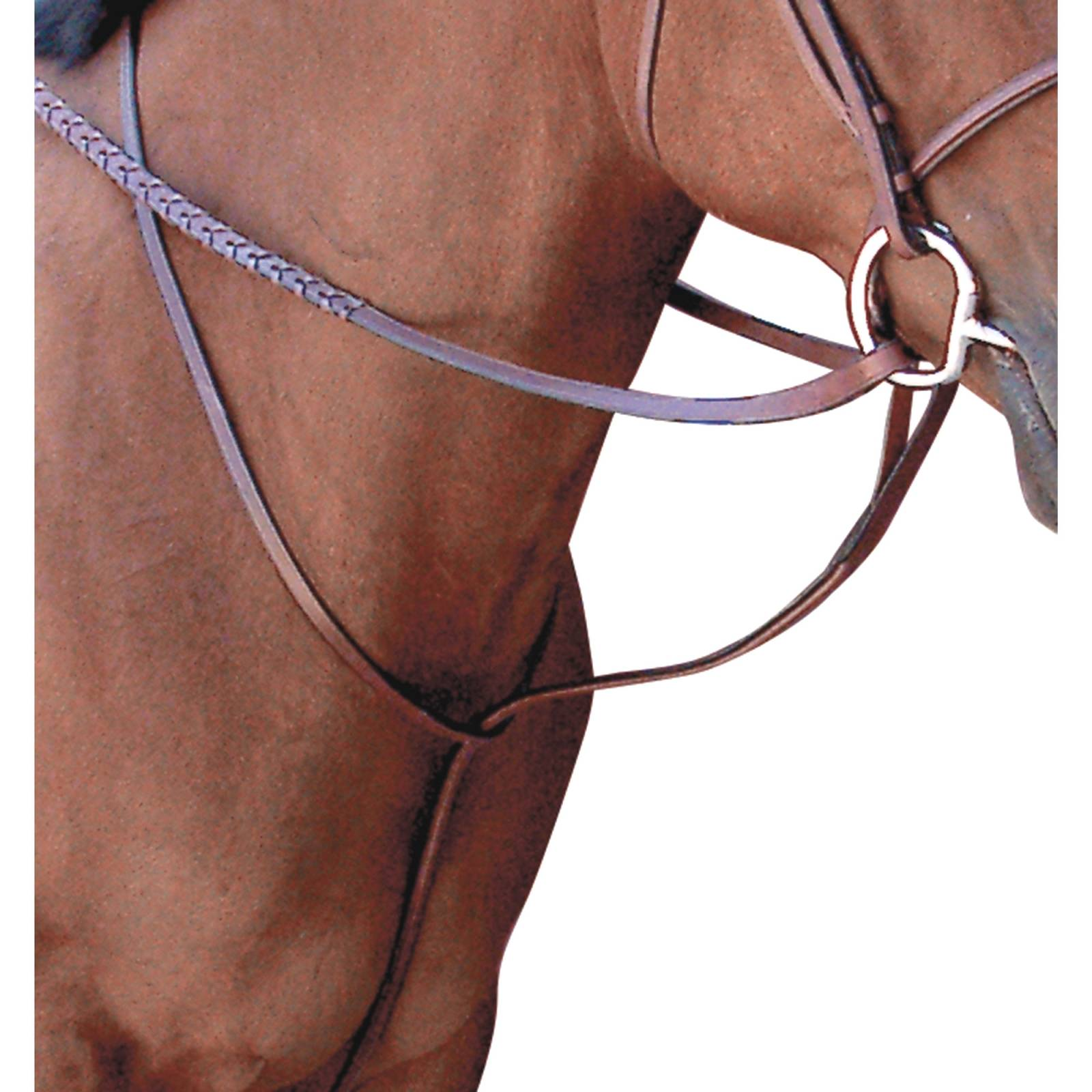 Toklat Passport Square Raised Standing Martingale