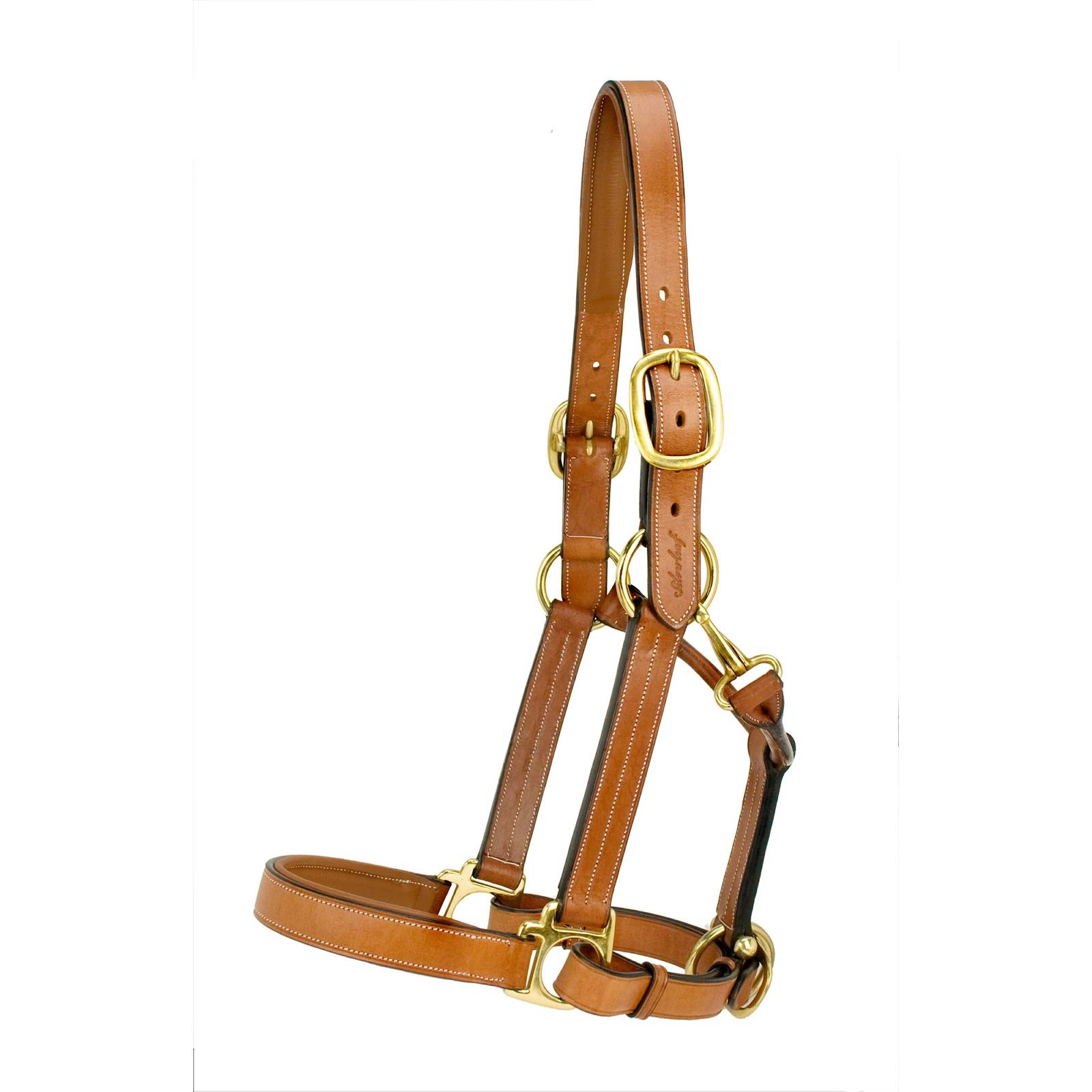 Toklat Silverleaf Padded Halter with Brass