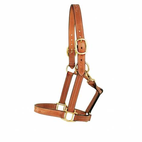 Toklat Silverleaf Fancy Halter with Brass