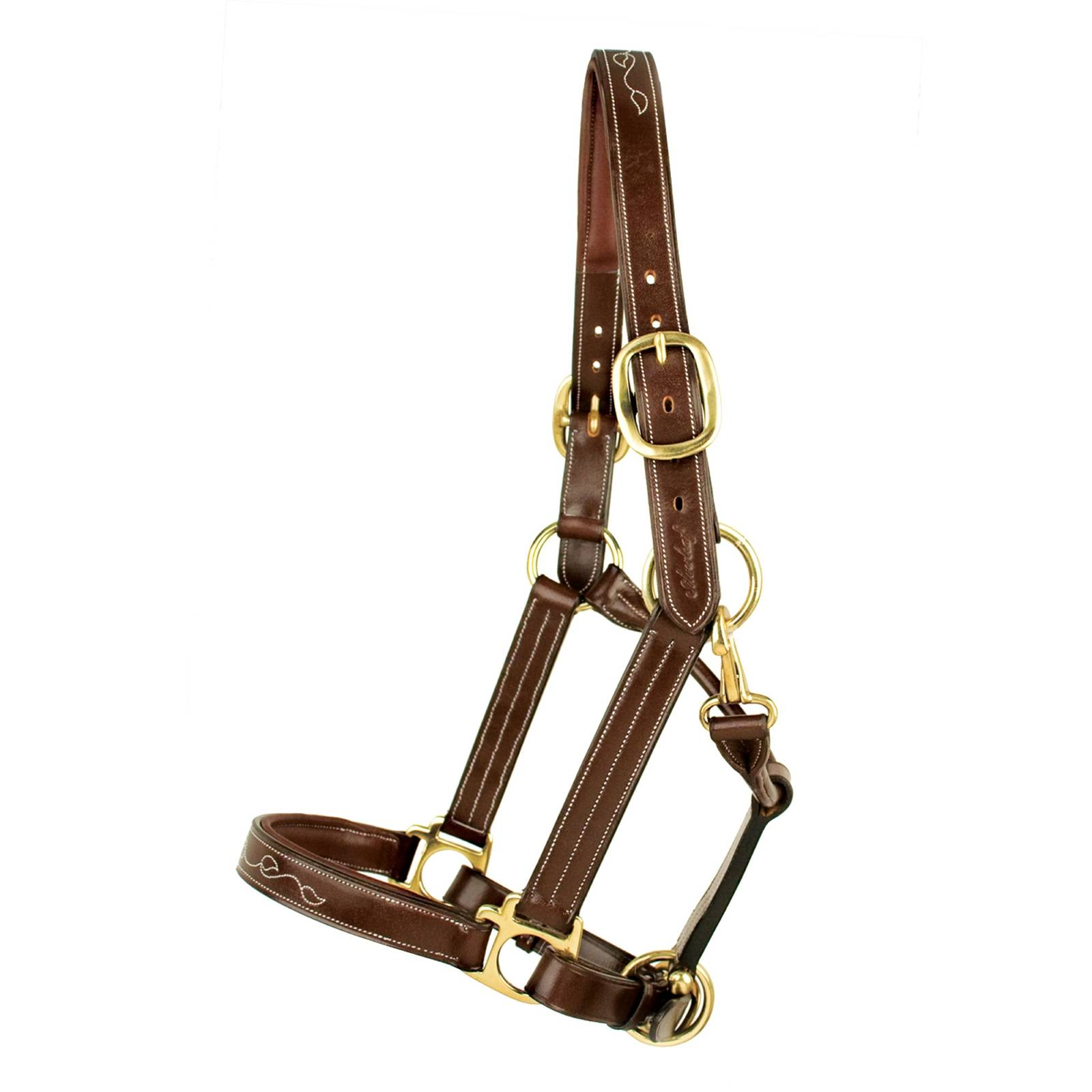 Toklat Silverleaf Fancy Padded Halter with Brass