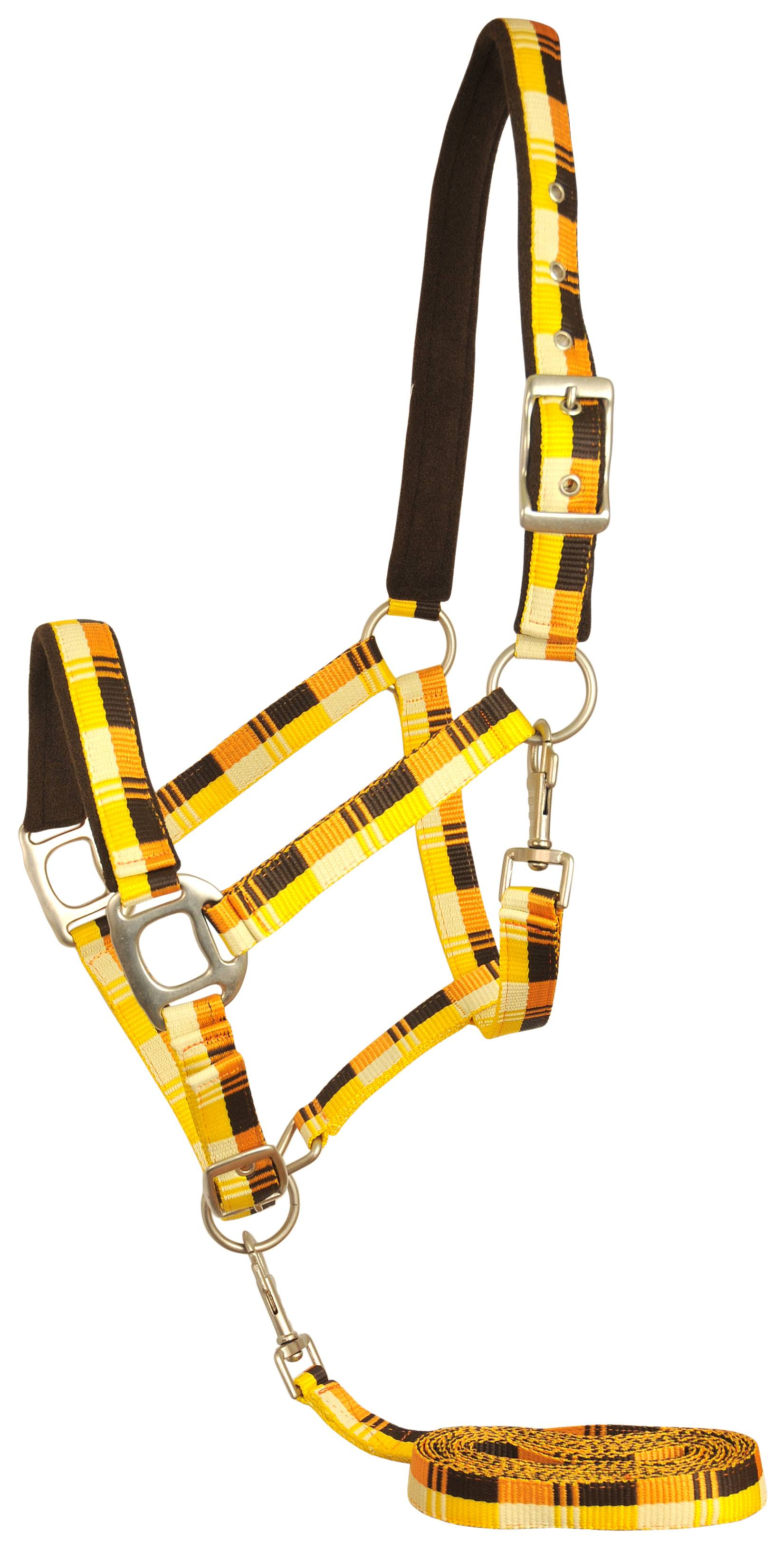 Gatsby Terra Fleece Padded Nylon Halter with Matching Lead